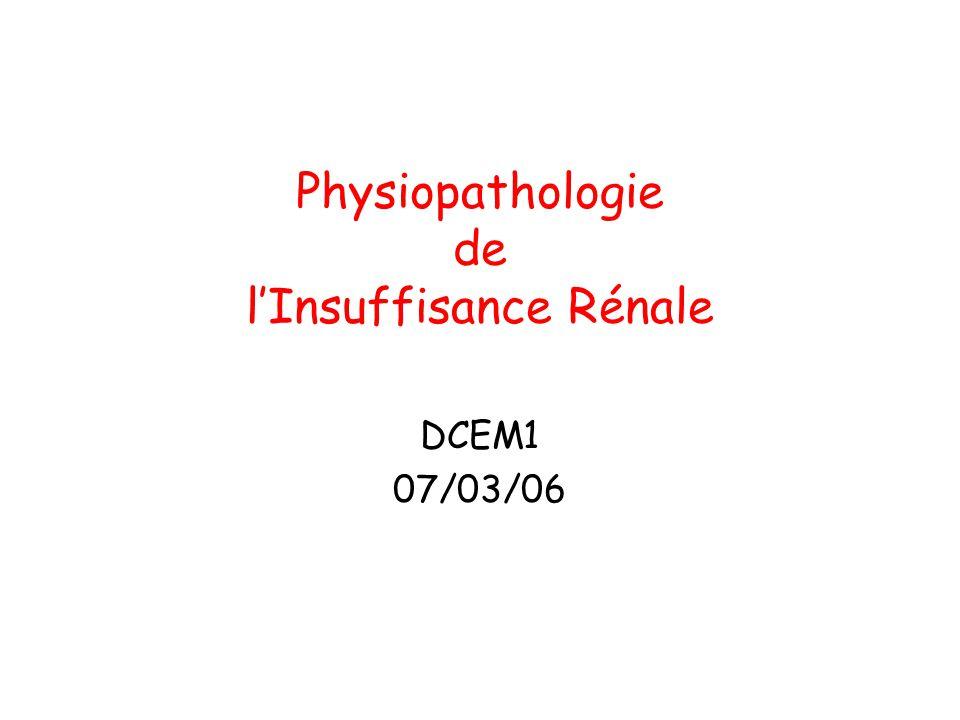 Physiopathologie de lInsuffisance Rénale DCEM1 07/03/06