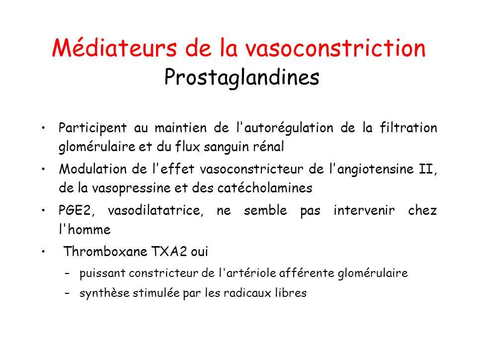 Médiateurs de la vasoconstriction Prostaglandines Participent au maintien de l autorégulation de la filtration glomérulaire et du flux sanguin rénal Modulation de l effet vasoconstricteur de l angiotensine II, de la vasopressine et des catécholamines PGE2, vasodilatatrice, ne semble pas intervenir chez l homme Thromboxane TXA2 oui –puissant constricteur de l artériole afférente glomérulaire –synthèse stimulée par les radicaux libres