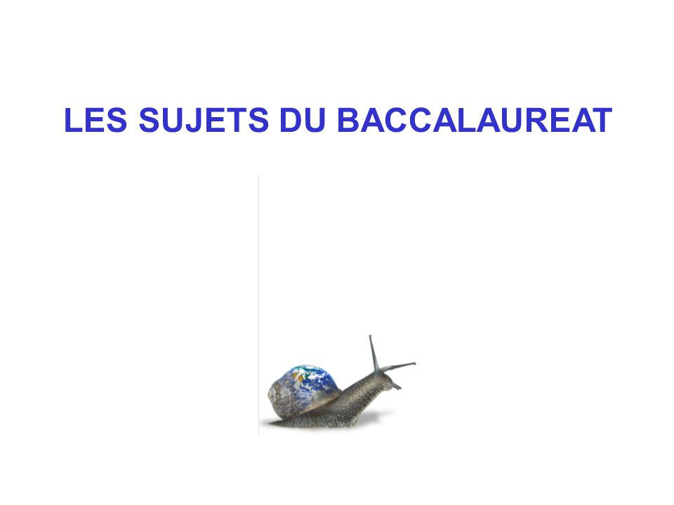 LES SUJETS DU BACCALAUREAT