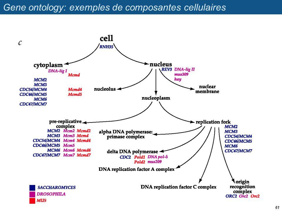 Gene ontology: exemples de composantes cellulaires 61