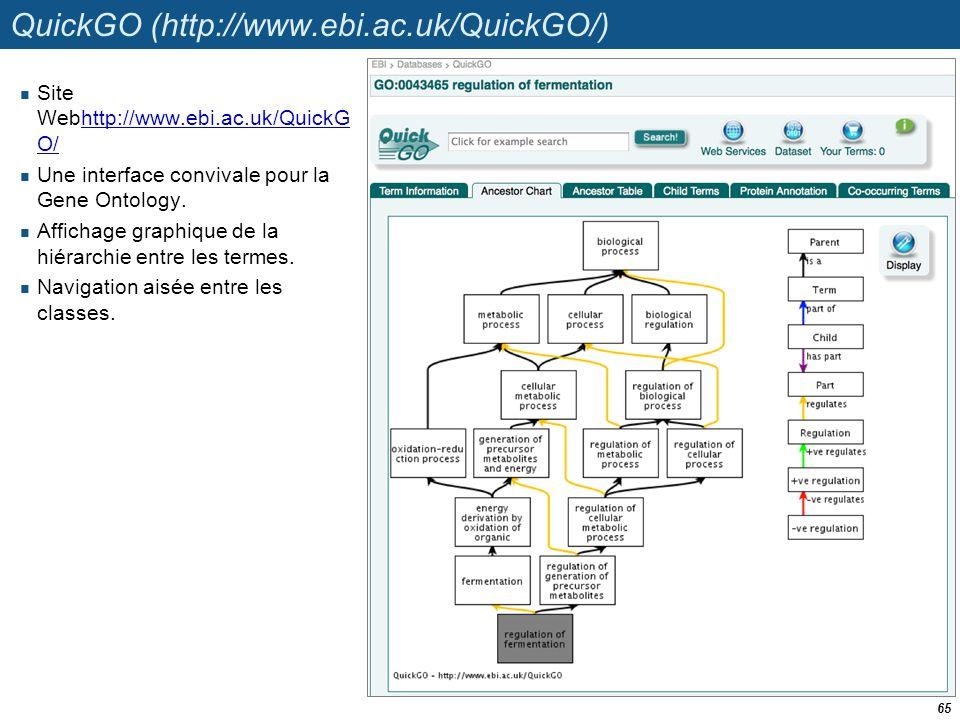 QuickGO (http://www.ebi.ac.uk/QuickGO/) Site Webhttp://www.ebi.ac.uk/QuickG O/http://www.ebi.ac.uk/QuickG O/ Une interface convivale pour la Gene Onto