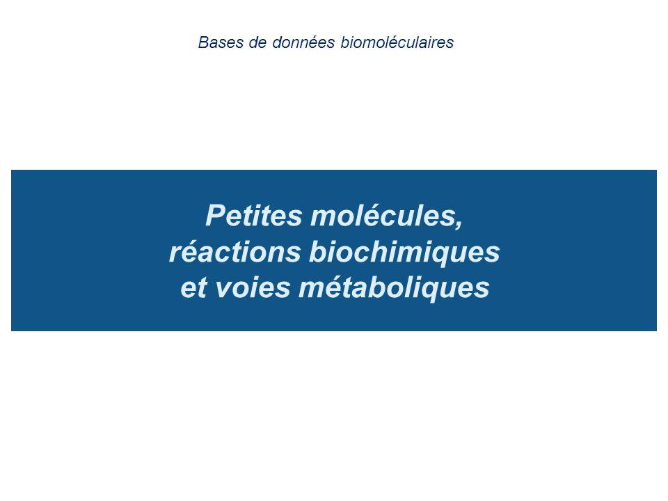 Petites molécules, réactions biochimiques et voies métaboliques Bases de données biomoléculaires