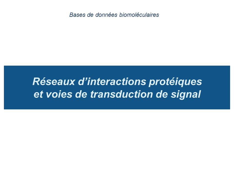 Réseaux dinteractions protéiques et voies de transduction de signal Bases de données biomoléculaires