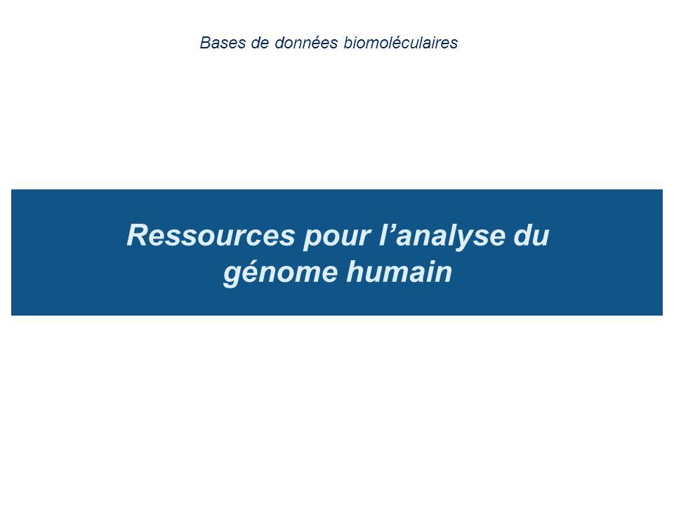 Ressources pour lanalyse du génome humain Bases de données biomoléculaires