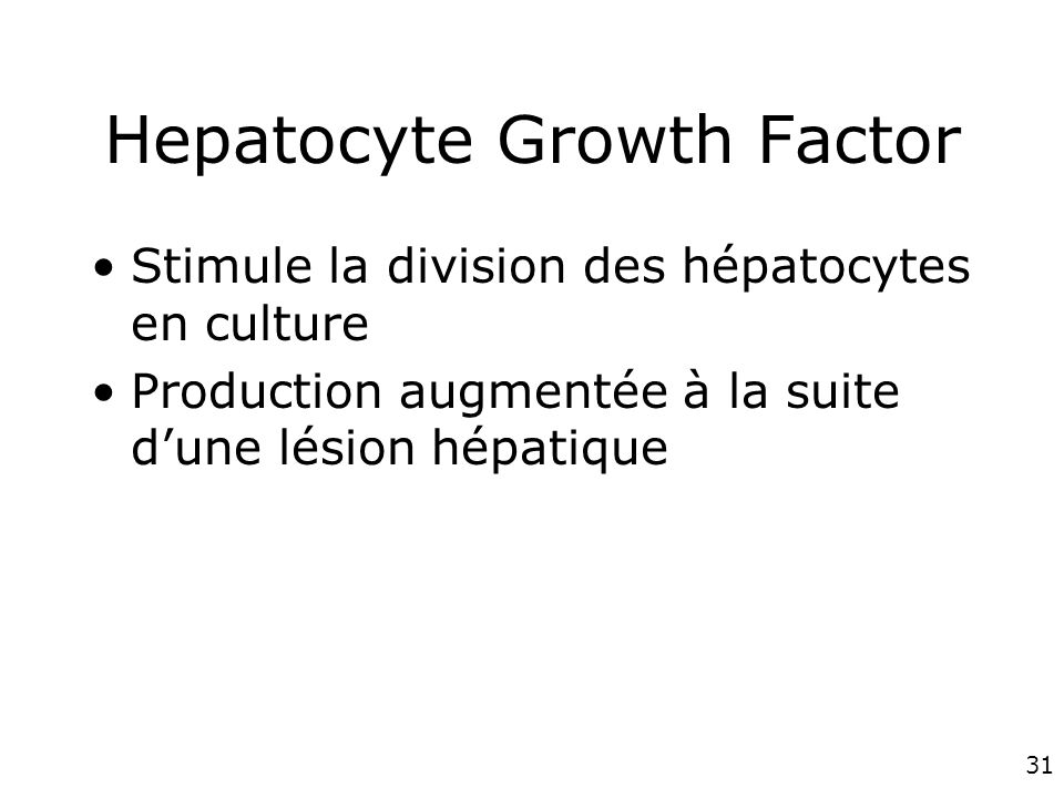 31 Hepatocyte Growth Factor Stimule la division des hépatocytes en culture Production augmentée à la suite dune lésion hépatique
