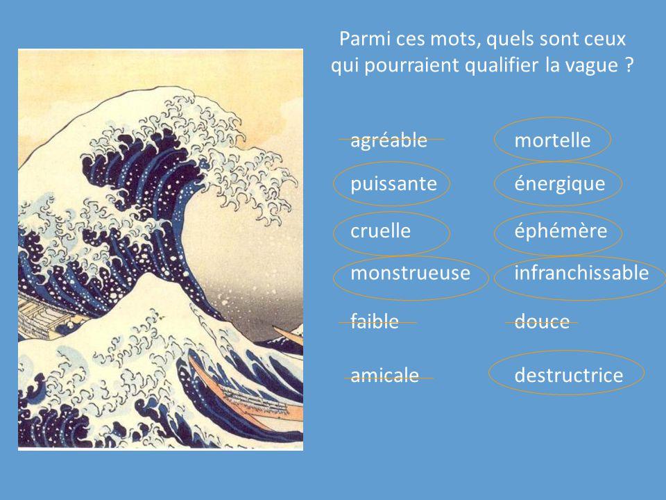 Parmi ces mots, quels sont ceux qui pourraient qualifier la vague ? agréable éphémèrecruelle monstrueuse destructriceamicale puissante douce mortelle