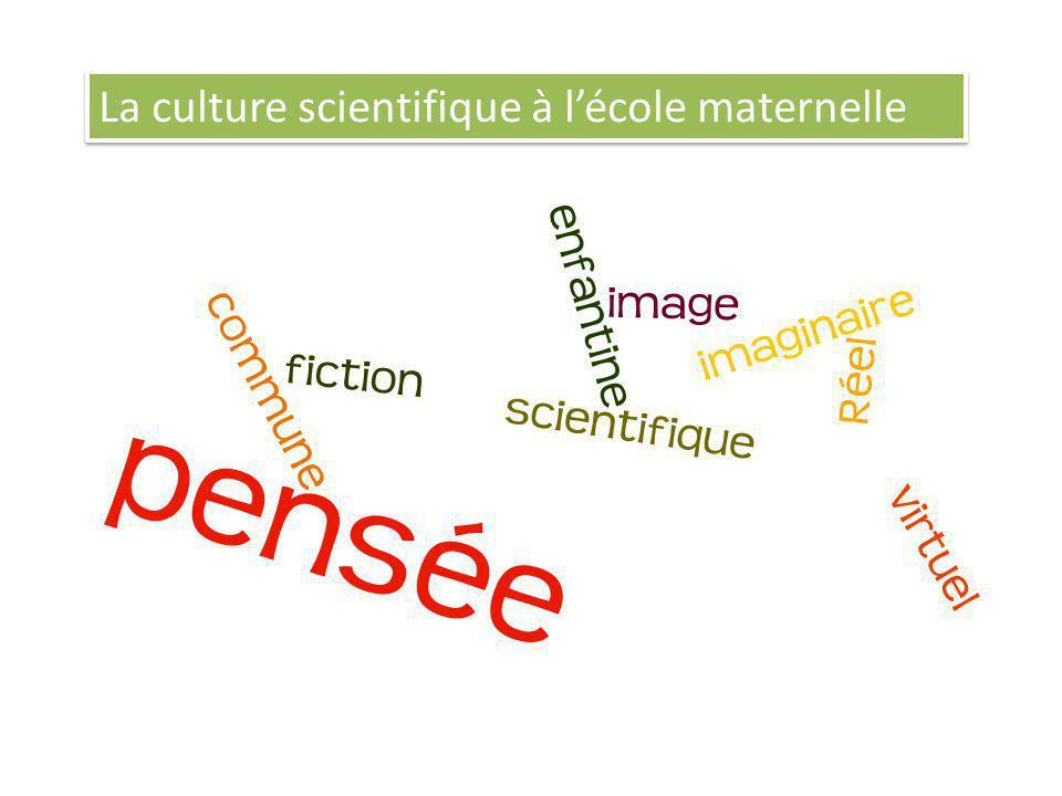 La culture scientifique à lécole maternelle