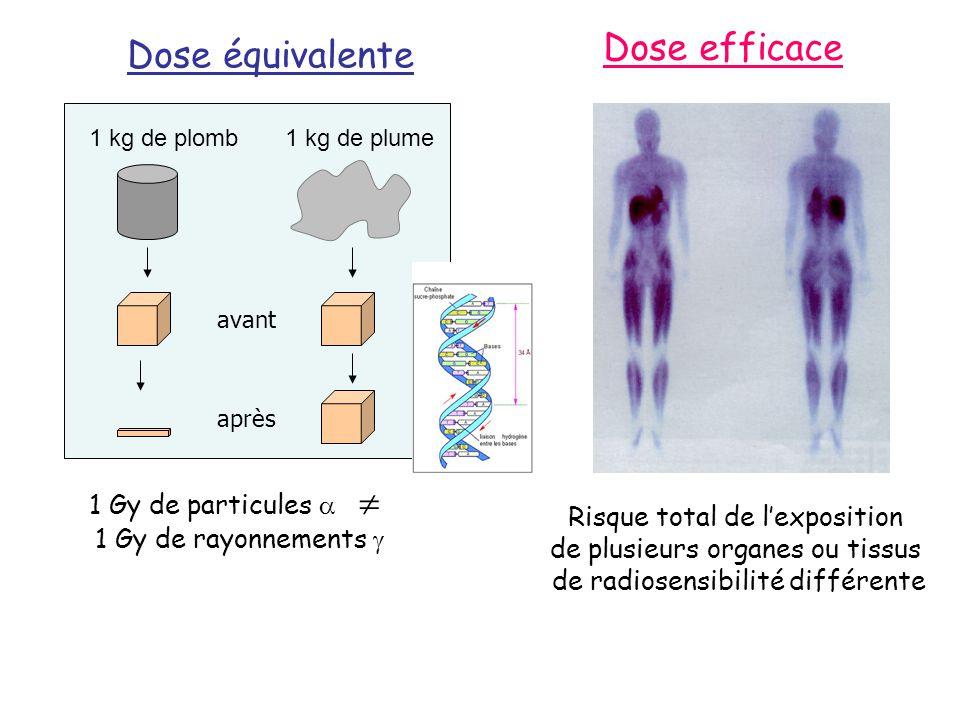 Toxicité du rayonnement Dose équivalente H (D x W R ) Sievert (Sv) Dose absorbée D (J/kg) Gray (Gy) W R : facteur de pondération radiologique Probabilité deffets stochastiques H T = R w R D T,R W R : variant de 1 (, X, ) à 20 ( ) Dose efficace E (E = T W T R w R D T,R ) Radiosensibilité des organes ou tissus Sievert (Sv) W T : facteur de pondération tissulaire Dose efficace engagée: En cas dincorporation de radionucléides, intégrale de la dose efficace sur 50 ans (travailleurs) Dose efficace collective: intégration de la dose efficace pour tous les individus exposés