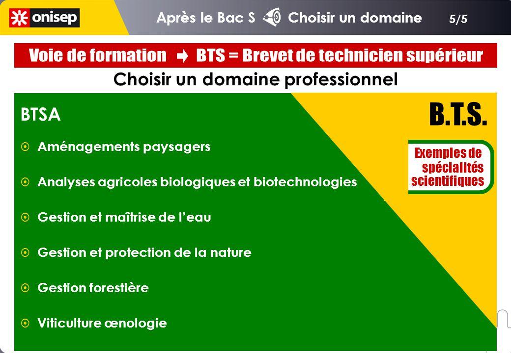 5/5 Choisir un domaine professionnel B.T.S. Exemples de spécialités scientifiques BTSA Aménagements paysagers Analyses agricoles biologiques et biotec