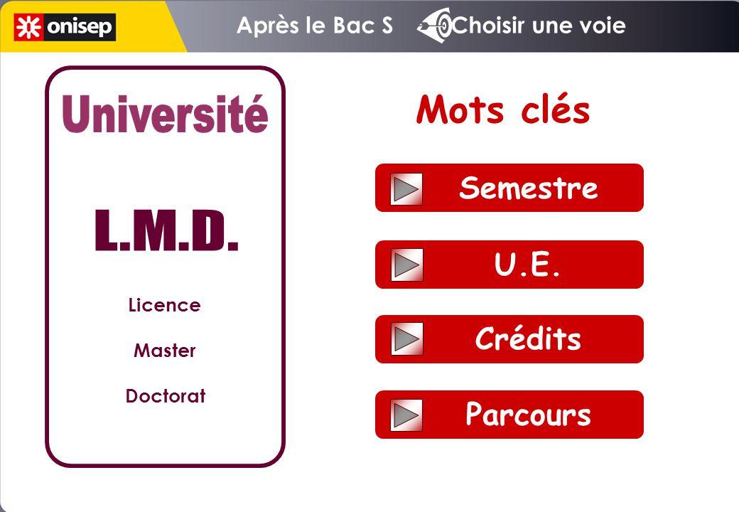 Semestre U.E. Crédits Parcours Mots clés Licence Master Doctorat Après le Bac S Choisir une voie