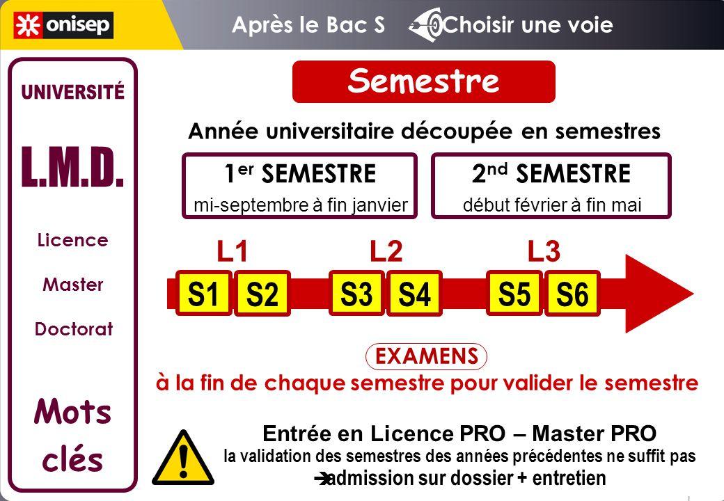 Licence Master Doctorat Mots clés début février à fin mai Année universitaire découpée en semestres 1 er SEMESTRE mi-septembre à fin janvier 2 nd SEME