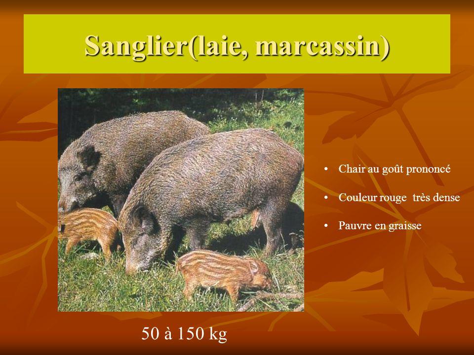 Sanglier(laie, marcassin) 50 à 150 kg Chair au goût prononcé Couleur rouge très dense Pauvre en graisse