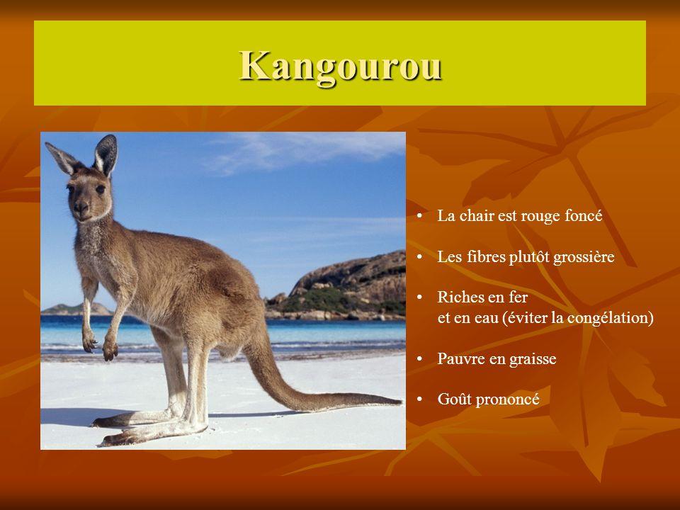 Kangourou La chair est rouge foncé Les fibres plutôt grossière Riches en fer et en eau (éviter la congélation) Pauvre en graisse Goût prononcé