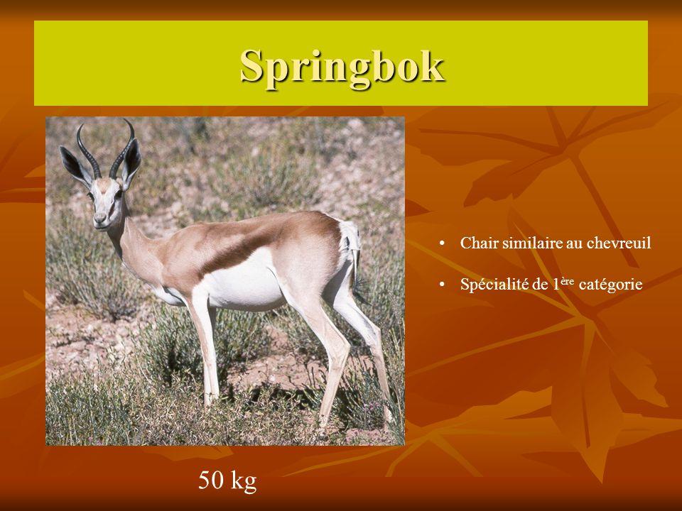 Springbok 50 kg Chair similaire au chevreuil Spécialité de 1 ère catégorie