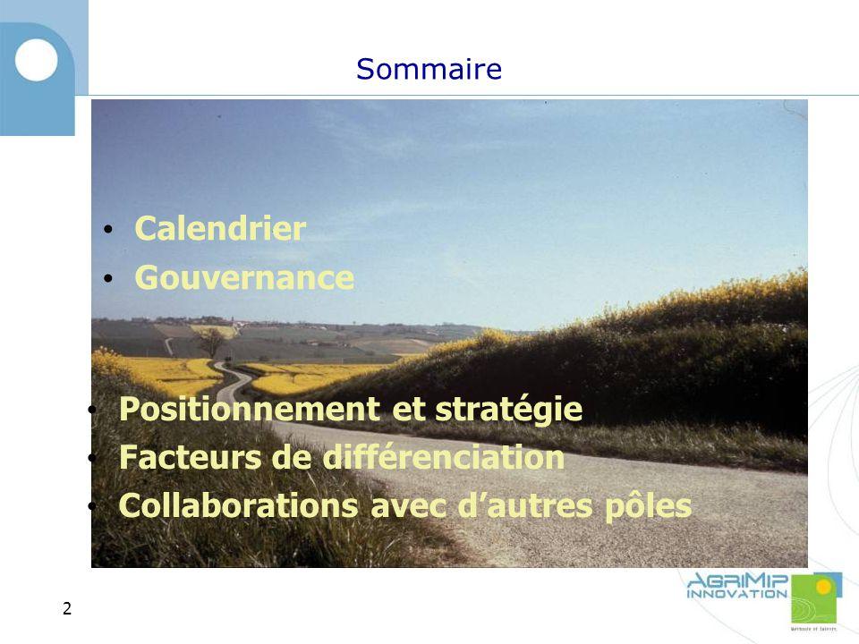 Sommaire Positionnement et stratégie Facteurs de différenciation Collaborations avec dautres pôles 2 Calendrier Gouvernance
