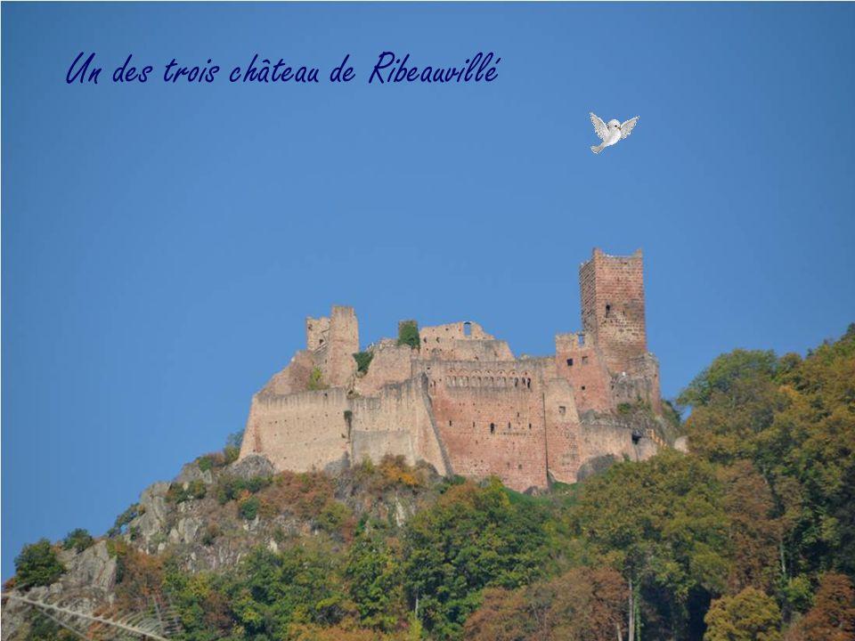 Fait le 7/11/2011 mondoune@yahoo.fr