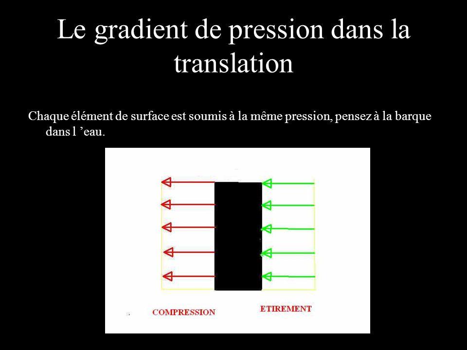 Le gradient de pression dans la translation Chaque élément de surface est soumis à la même pression, pensez à la barque dans l eau.
