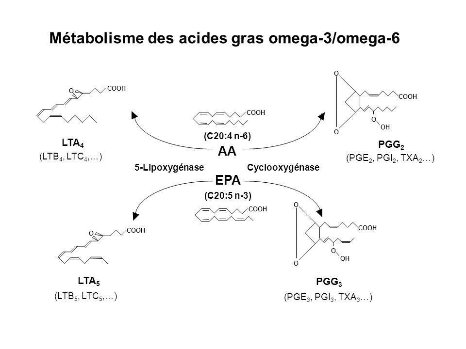 COOH O O O OH COOH 5-LipoxygénaseCyclooxygénase O COOH O O O OH COOH O PGG 3 (PGE 3, PGI 3, TXA 3 …) LTA 5 (LTB 5, LTC 5,…) LTA 4 (LTB 4, LTC 4,…) PGG 2 (PGE 2, PGI 2, TXA 2 …) AA EPA Métabolisme des acides gras omega-3/omega-6 (C20:4 n-6) (C20:5 n-3)