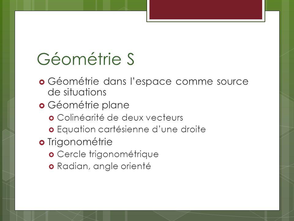 Géométrie S Géométrie dans lespace comme source de situations Géométrie plane Colinéarité de deux vecteurs Equation cartésienne dune droite Trigonométrie Cercle trigonométrique Radian, angle orienté