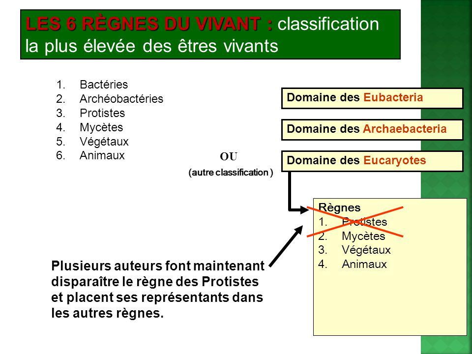 LES 6 RÈGNES DU VIVANT : LES 6 RÈGNES DU VIVANT : classification la plus élevée des êtres vivants 1.Bactéries 2.Archéobactéries 3.Protistes 4.Mycètes 5.Végétaux 6.Animaux Domaine des Eubacteria Domaine des Archaebacteria Règnes 1.Protistes 2.Mycètes 3.Végétaux 4.Animaux Domaine des Eucaryotes OU (autre classification ) Plusieurs auteurs font maintenant disparaître le règne des Protistes et placent ses représentants dans les autres règnes.