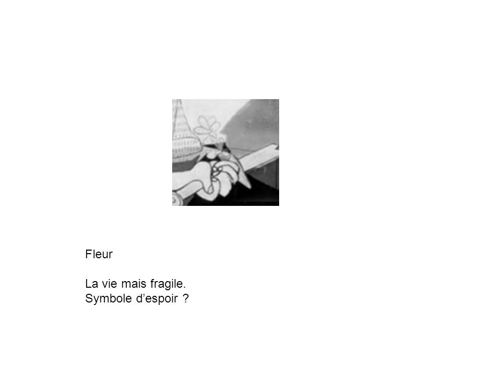 Fleur La vie mais fragile. Symbole despoir ?