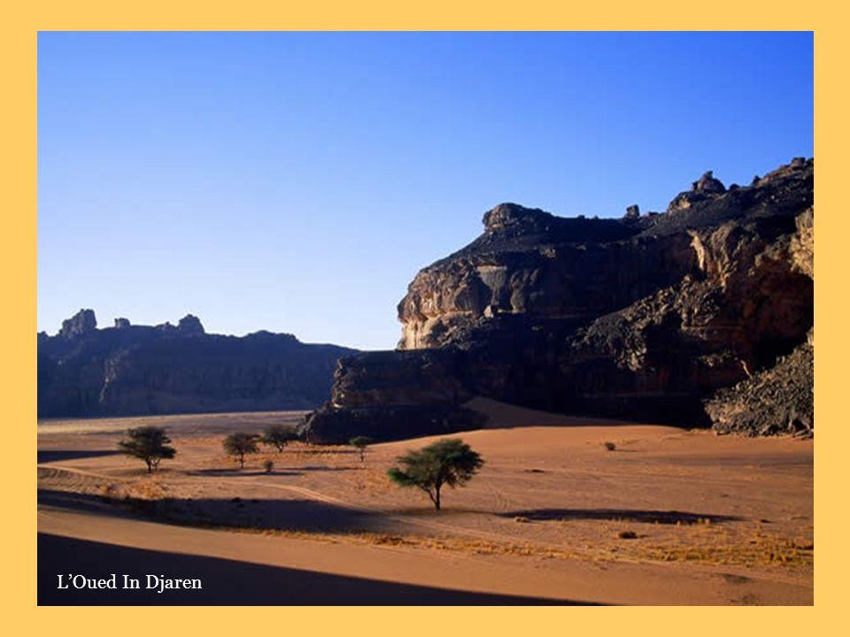 Site de Djabaen (scène de chasse vielle de 4000 à 5000 ans)