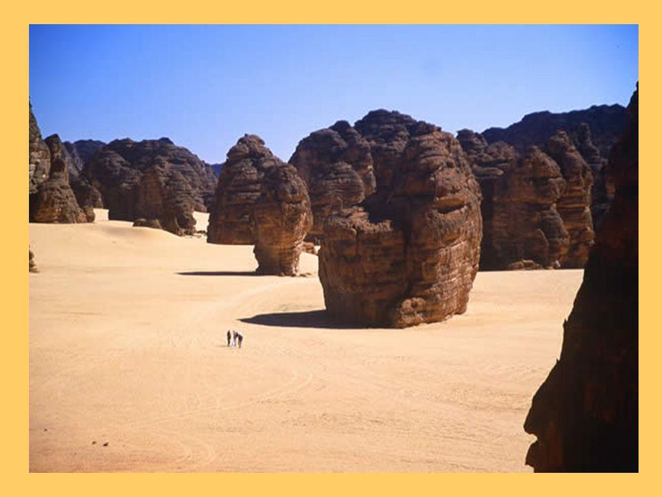 Dunes a lassaut du Grès