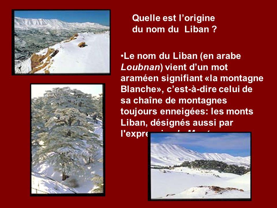 La république du Liban est un petit pays de 10.400 km, soit léquivalent dune surface trois fois moins que celle de la Belgique et de deux fois moins q