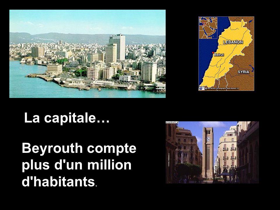 Le nom du Liban (en arabe Loubnan) vient dun mot araméen signifiant «la montagne Blanche», cest-à-dire celui de sa chaîne de montagnes toujours enneig