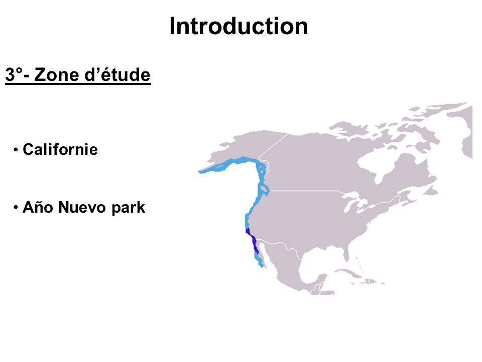 Références bibliographiques Publications -Foraging Ecology of Nothern Elephant Seals (B.J Le Bœuf, D.E Crocker et al.) -Ocean climate and seal condition (B.J Le Bœuf, D.E Crocker) Sites internet -www.elephantseal.org -www.cebc.cnrs.fr