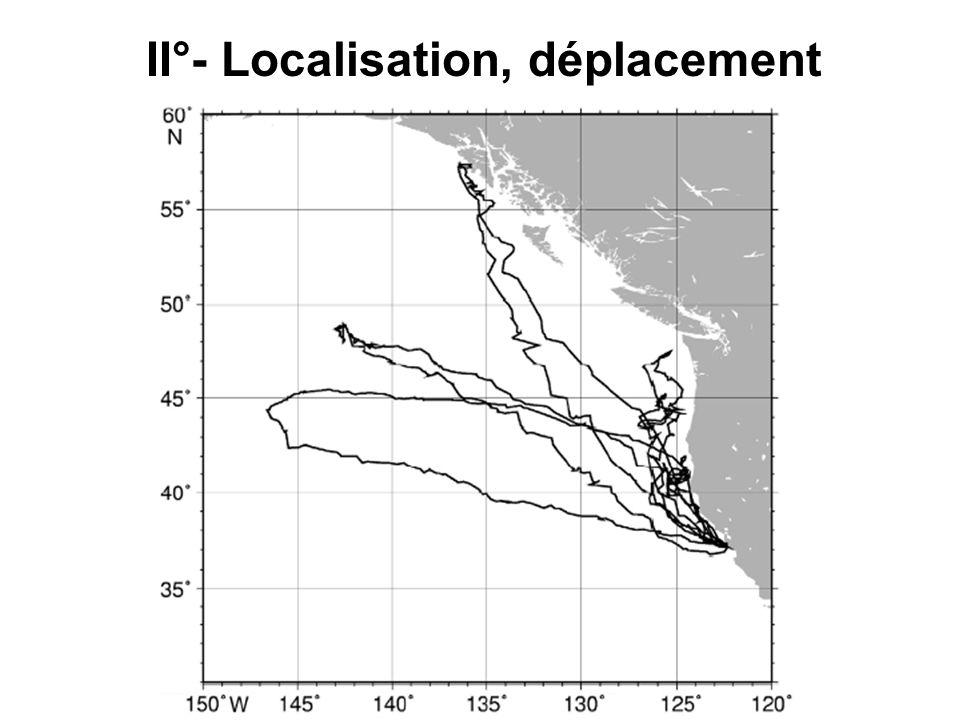 III°-Plongée Type D: pelagic foraging Type A: plongée de transit Type C: plongée profonde induite par les proies Corrélation positive entre le % de plongée de type D et le gain de masse