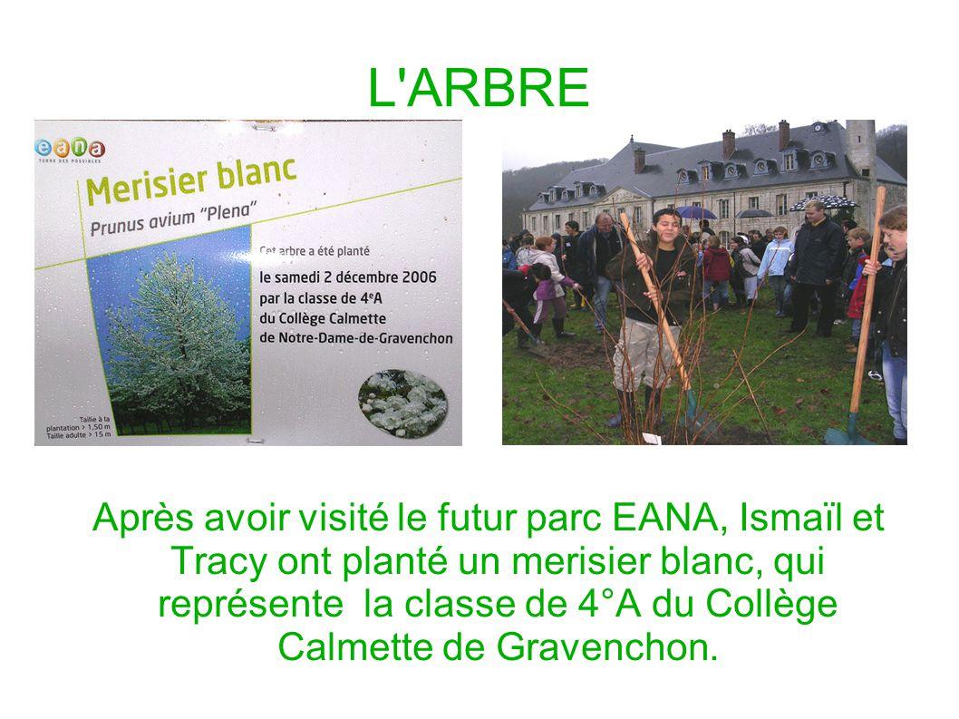 L'ARBRE Après avoir visité le futur parc EANA, Ismaïl et Tracy ont planté un merisier blanc, qui représente la classe de 4°A du Collège Calmette de Gr