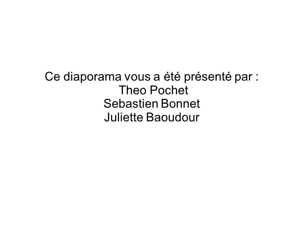Ce diaporama vous a été présenté par : Theo Pochet Sebastien Bonnet Juliette Baoudour