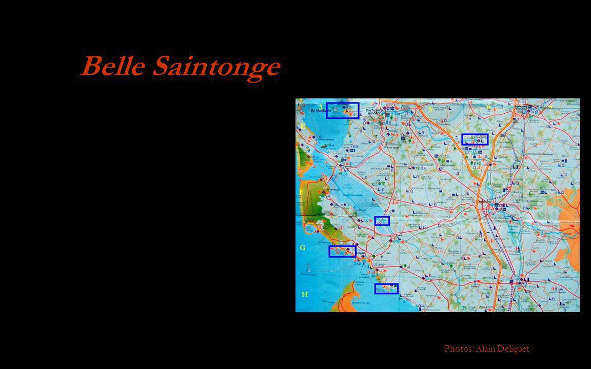 Belle Saintonge Photos: Alain Deliquet