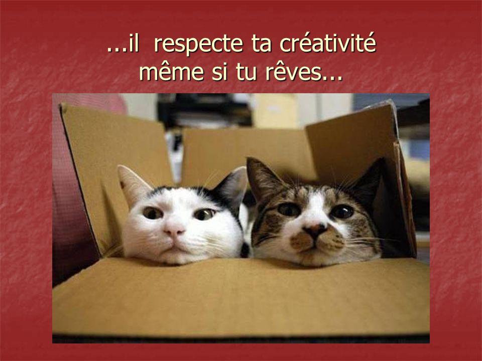 ...il respecte ta créativité même si tu rêves...