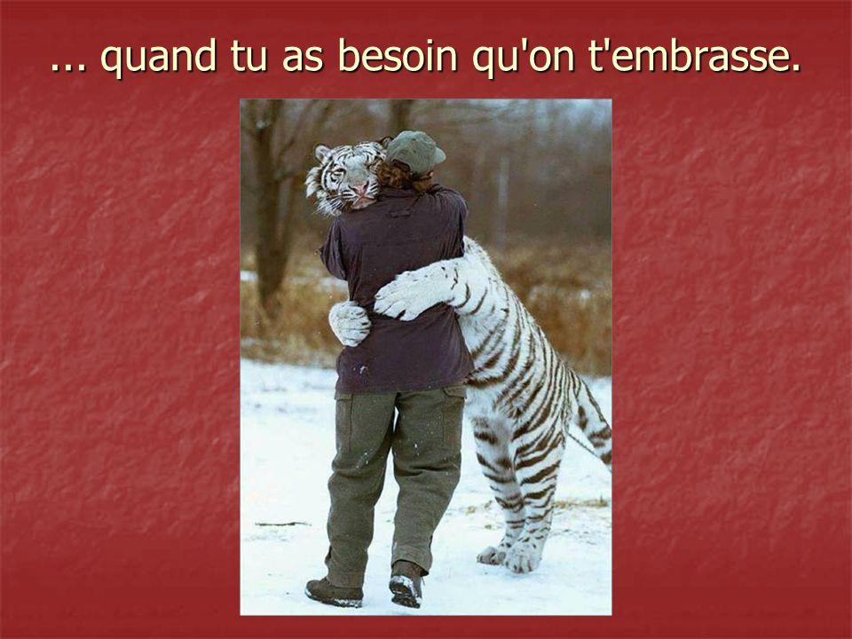 saches, qu il est difficile de trouver un bon ami, difficile de le laisser tomber, et impossible de l oublier!