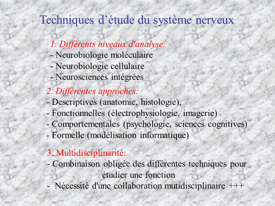 Les techniques des neurosciences intégrées 1.