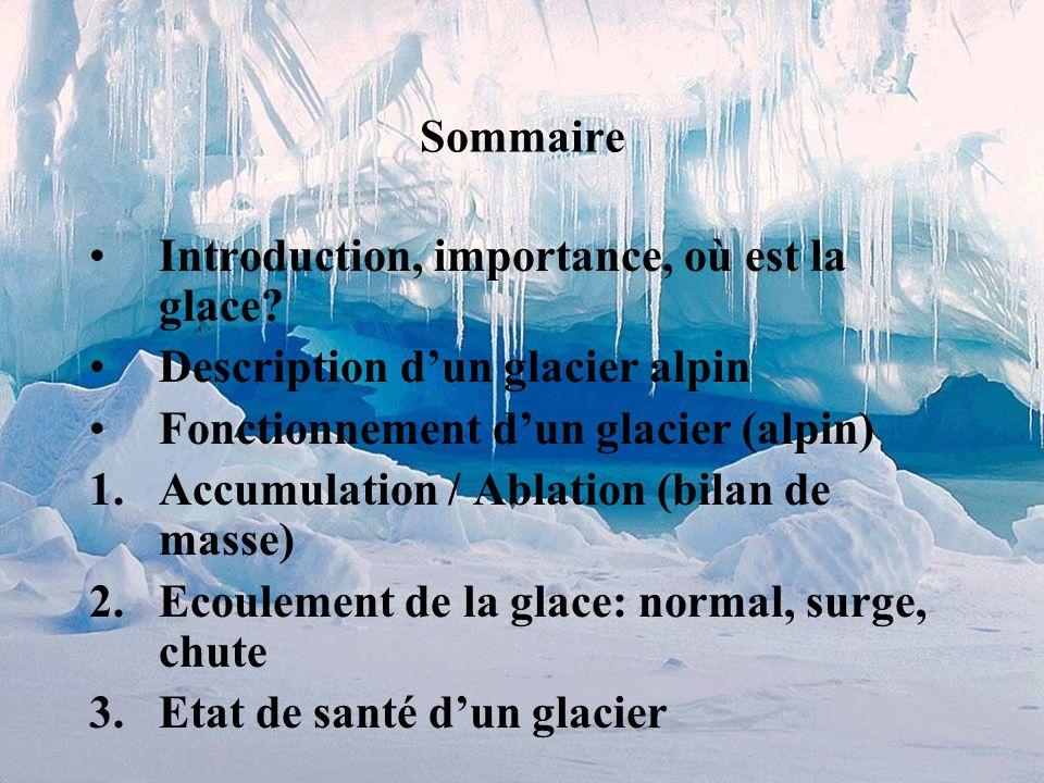 Glaciers Glaciologie Morphologie et dynamique des glaciers alpins