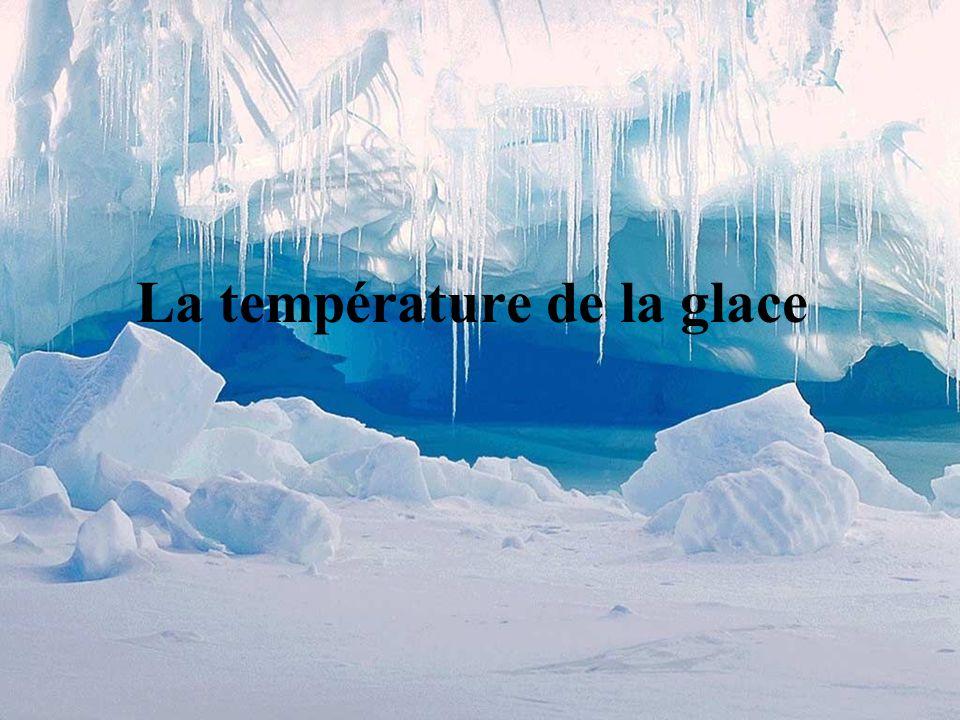 Glacier Malaspina (Alaska), magnifique glacier de piémont = glacier qui s étale à la sortie d une vallée.