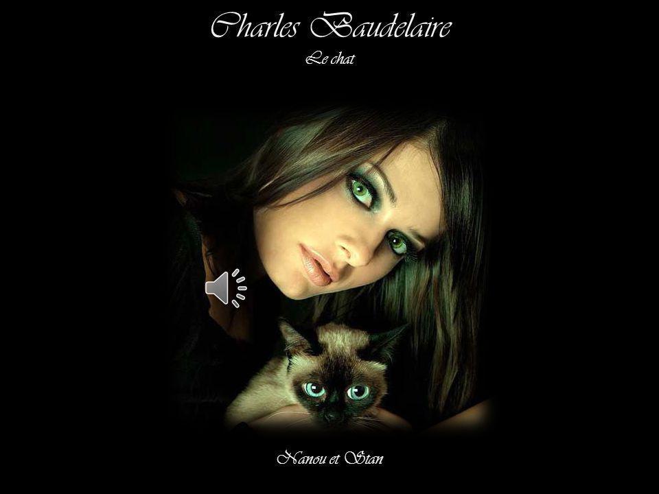 Charles Baudelaire Le chat Nanou et Stan