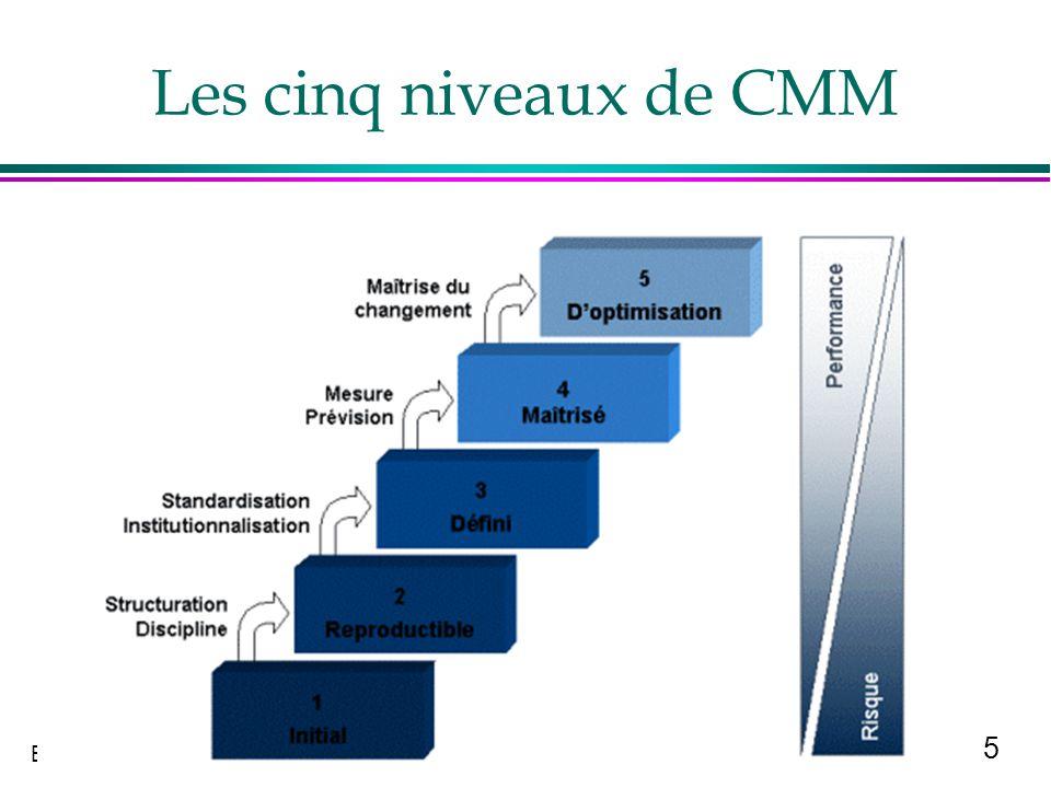 5 B Quinio Les cinq niveaux de CMM