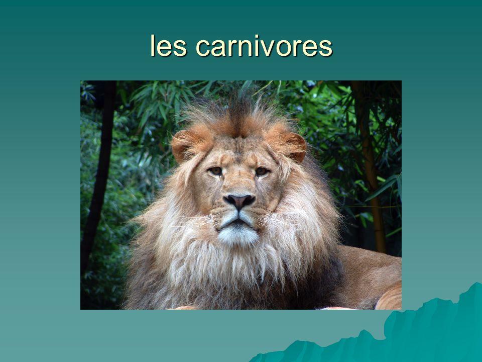 les carnivores
