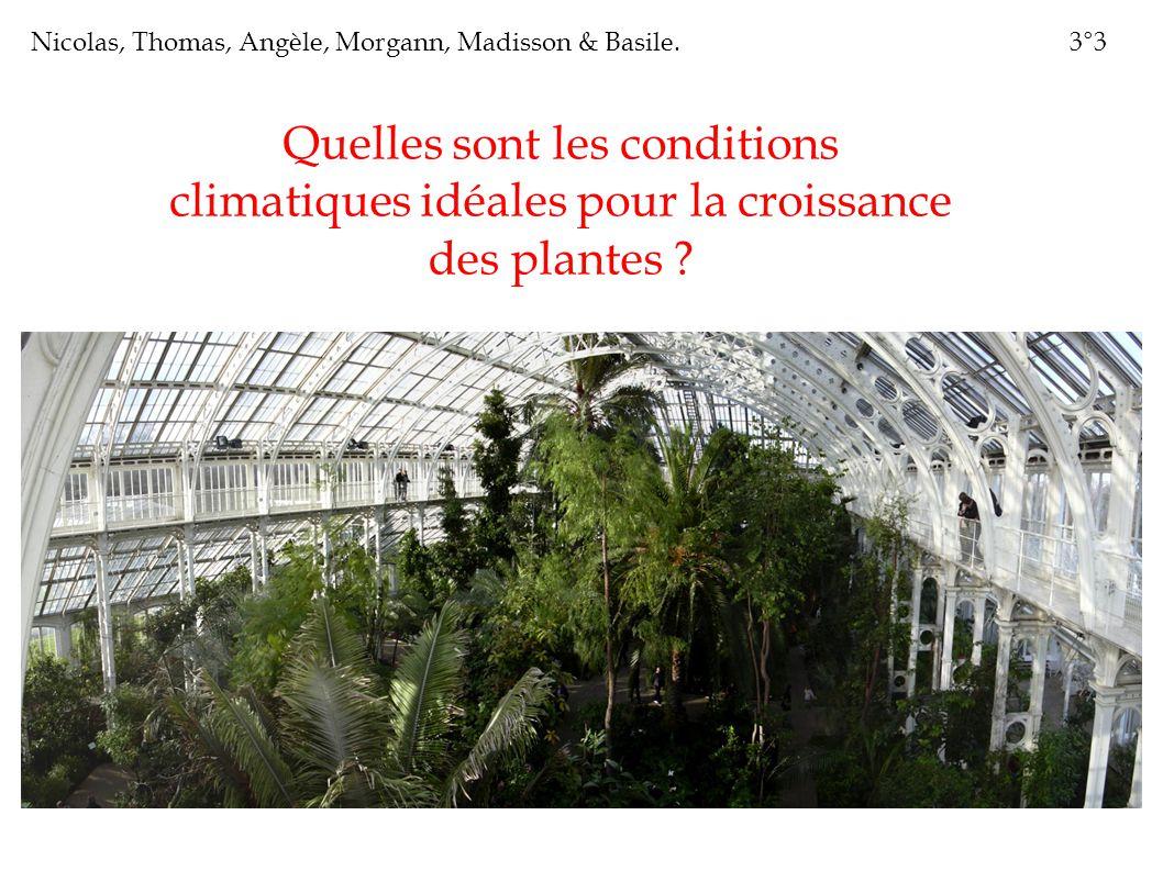 Quelles sont les conditions climatiques idéales pour la croissance des plantes ? Nicolas, Thomas, Angèle, Morgann, Madisson & Basile.3°3