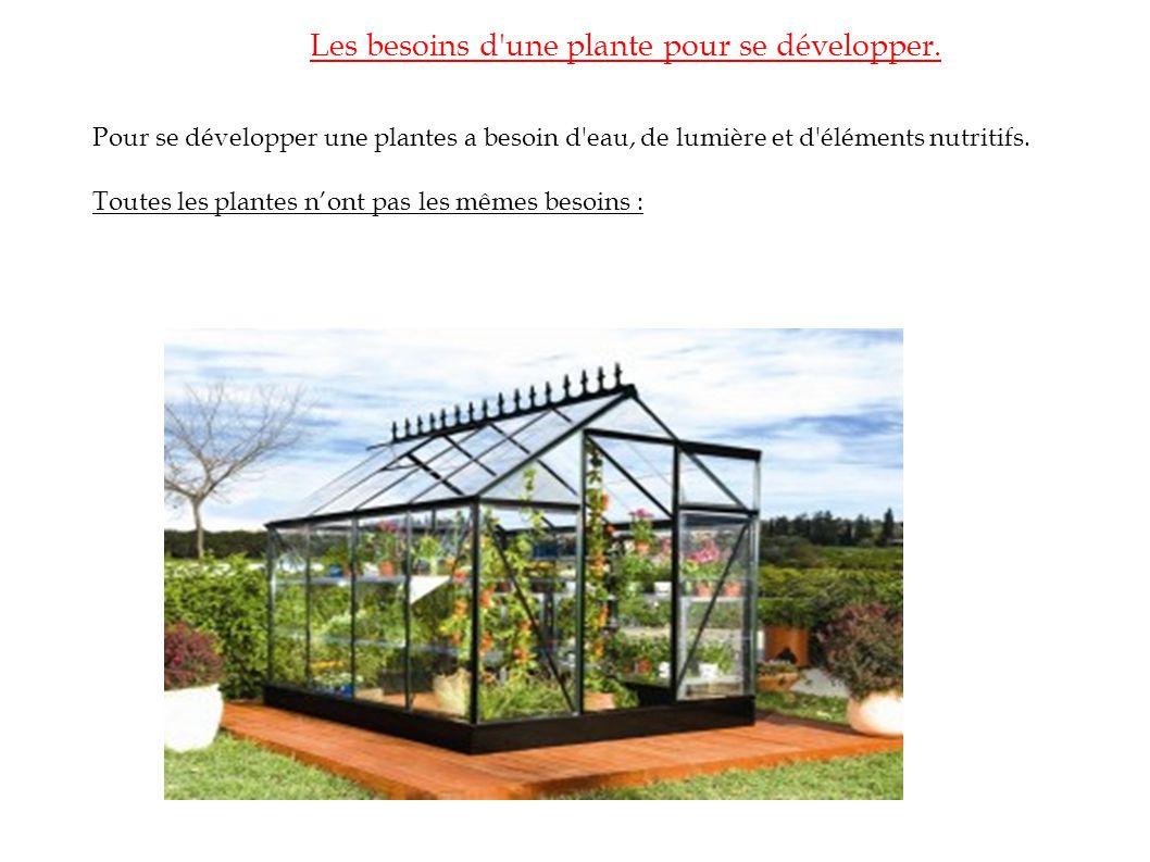 Les besoins d'une plante pour se développer. Pour se développer une plantes a besoin d'eau, de lumière et d'éléments nutritifs. Toutes les plantes non