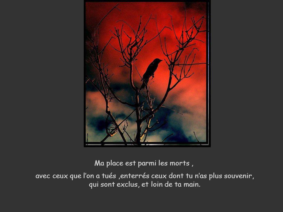 Ma place est parmi les morts, avec ceux que lon a tués,enterrés ceux dont tu nas plus souvenir, qui sont exclus, et loin de ta main.
