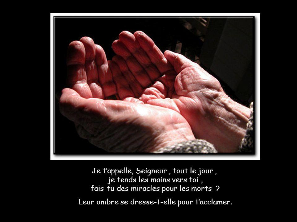 Je tappelle, Seigneur, tout le jour, je tends les mains vers toi, fais-tu des miracles pour les morts .