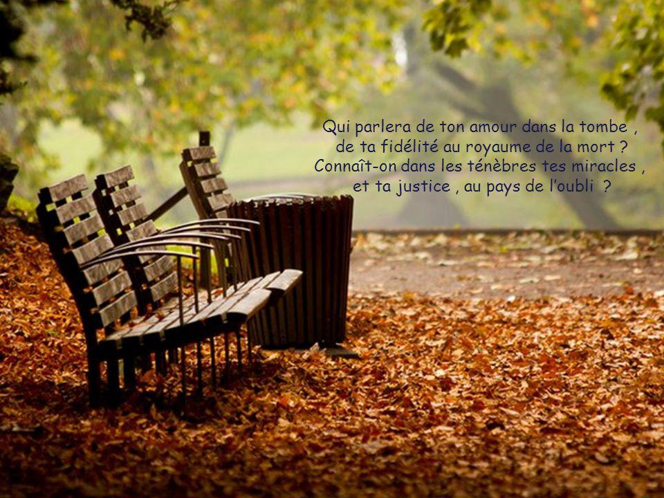 Qui parlera de ton amour dans la tombe, de ta fidélité au royaume de la mort .
