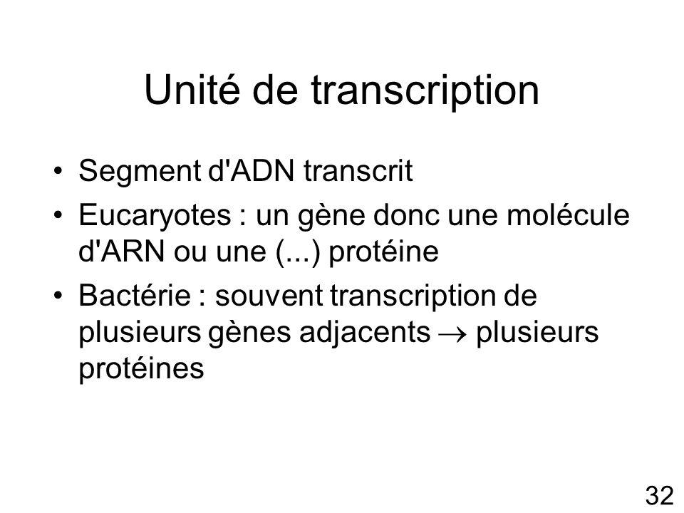 32 Unité de transcription Segment d ADN transcrit Eucaryotes : un gène donc une molécule d ARN ou une (...) protéine Bactérie : souvent transcription de plusieurs gènes adjacents plusieurs protéines