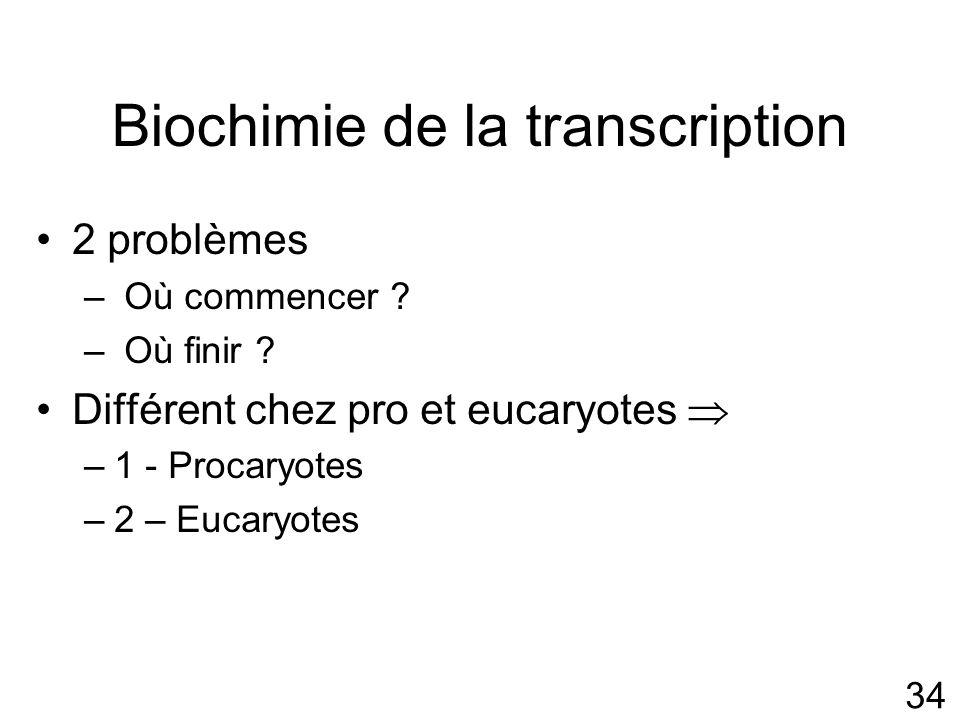 34 Biochimie de la transcription 2 problèmes – Où commencer .