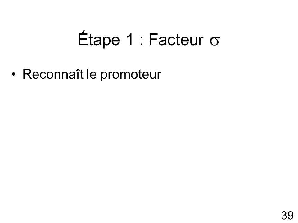 39 Étape 1 : Facteur Reconnaît le promoteur